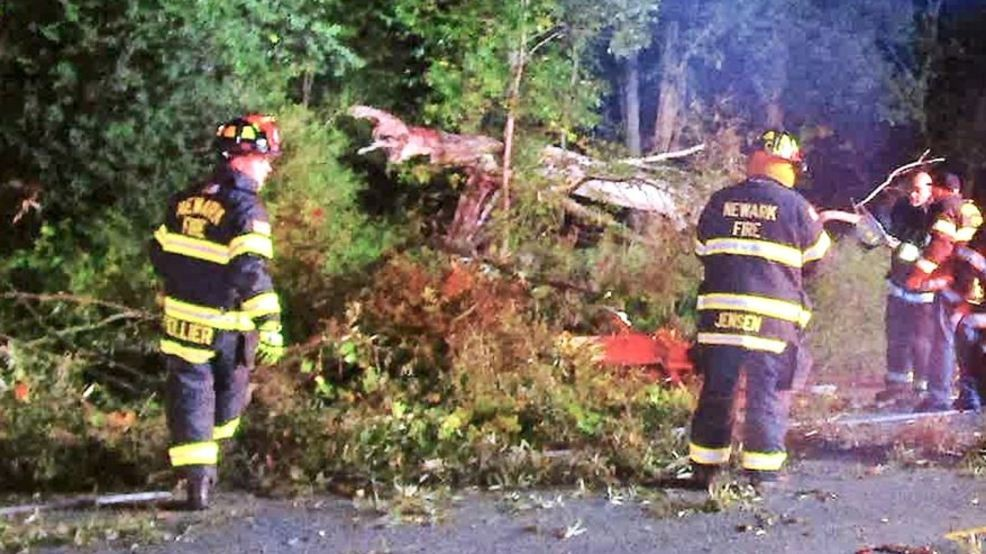 Couple unhurt after tree comes down on vehicle in Newark