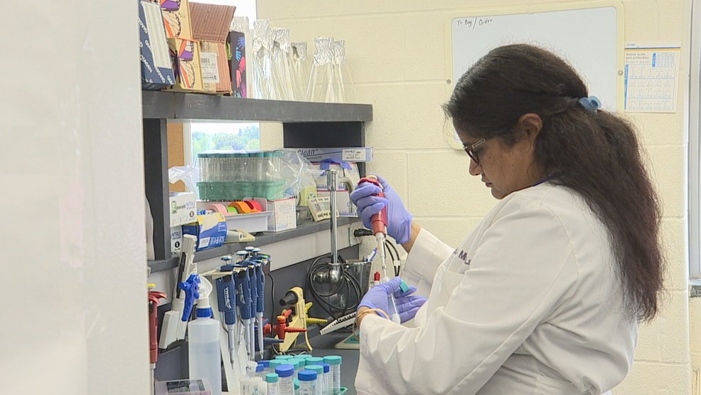 Rochester Regional Health playing big role in ear infection research